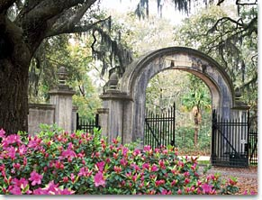 Things to do in Savannah, busybeevacations.com