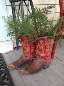 Spruce meet Boots